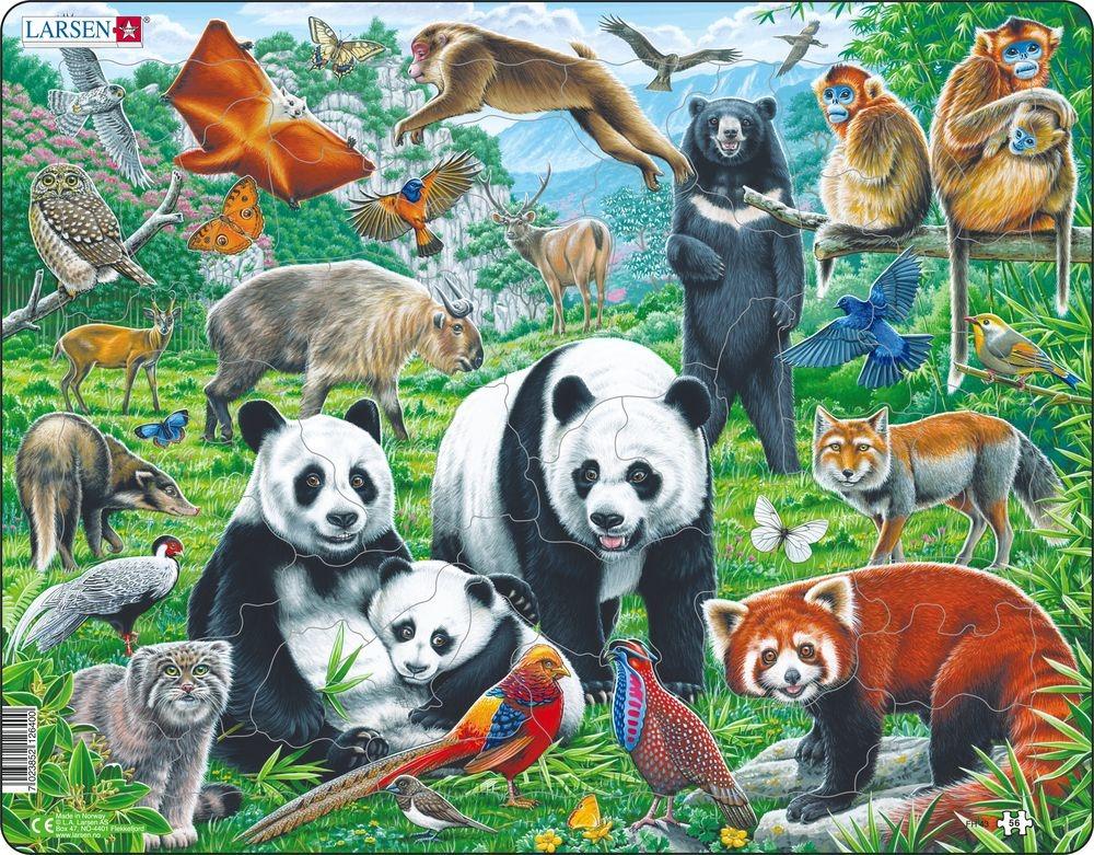 Купить Пазл Дикие животные Азии, 14 деталей, Larsen,