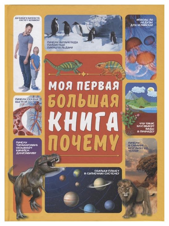 Книга АСТ Моя первая большая книга. Моя первая большая книга Почему фото