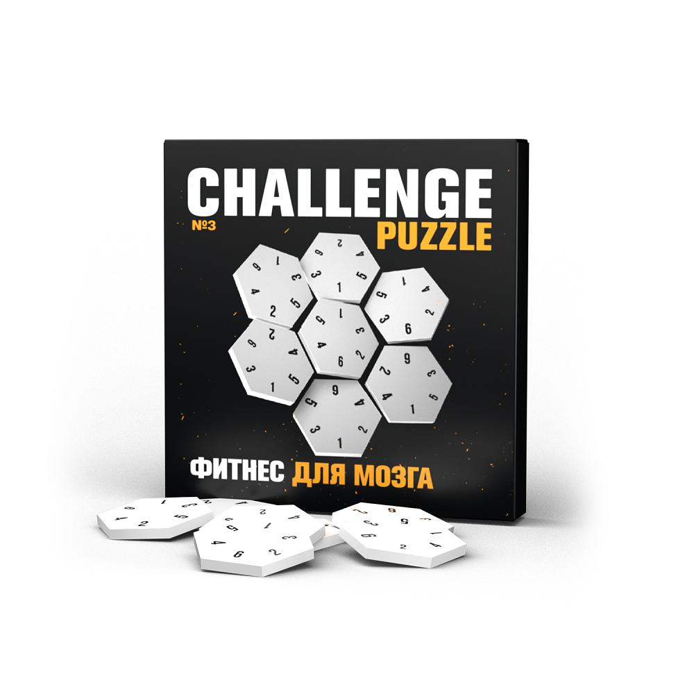 Головоломка IQ Puzzle Challenging Puzzle №3 фото