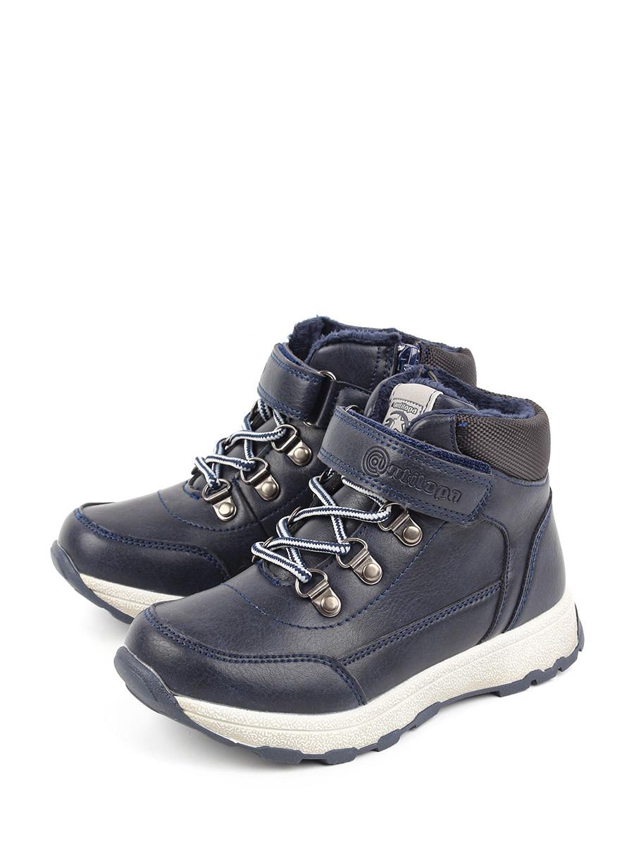 Ботинки для мальчиков Antilopa AL 202159 цв. синий р. 35 Antilopa   фото