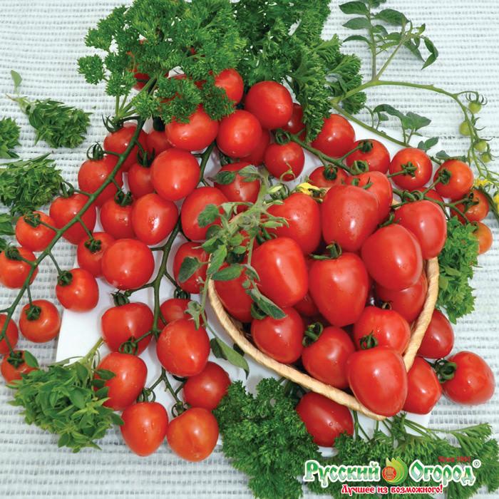 Семена овощей Русский огород 300177 Томат