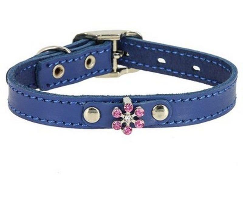 Ошейник Каскад Флер кожаный с украшением Цветок со стразами синий для собак 15ммх24-30см