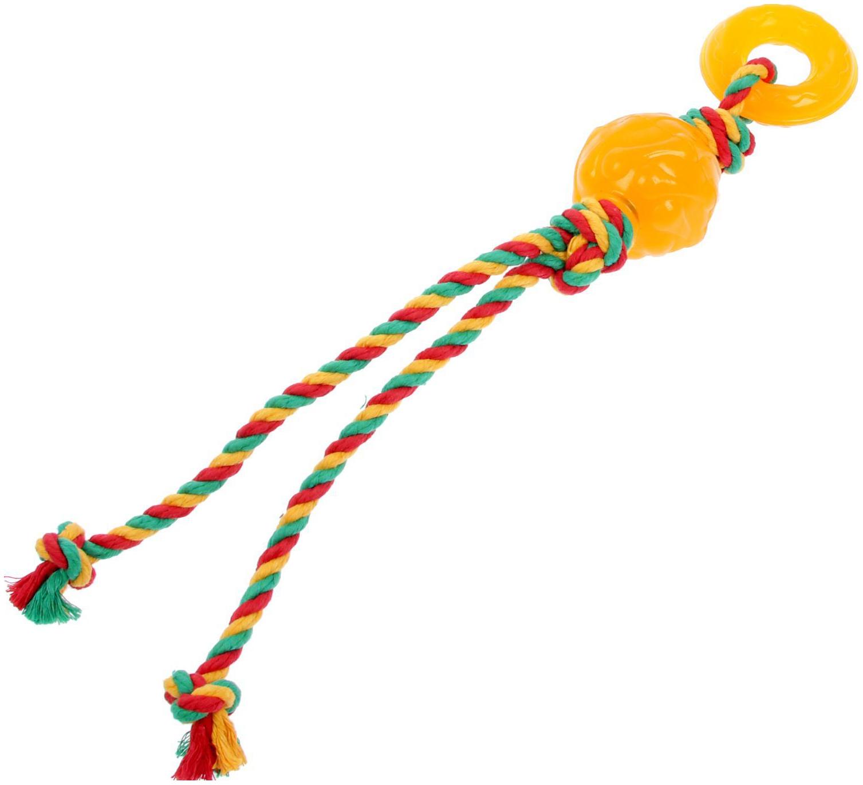 Жевательная игрушка для собак DOGLIKE Комета с канатом и этикеткой, зеленый, длина 19 см