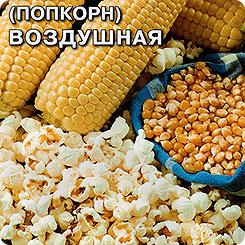 Семена Кукуруза попкорн Воздушная, 5 г, СеДеК
