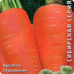 Семена Морковь Шантенэ 2461, 2 г, Поиск