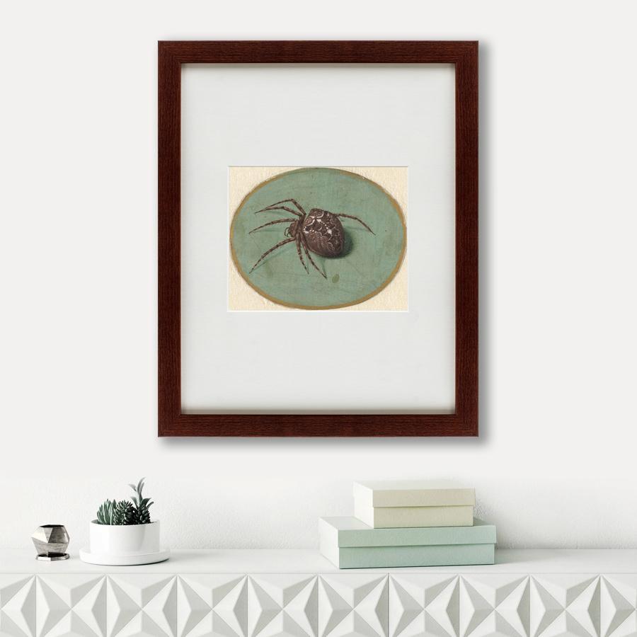 Литография Spider, 1690, 42х52см, Картины в Квартиру фото
