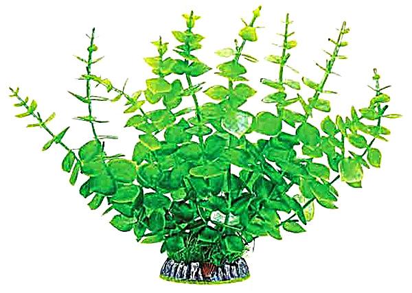 Растение аквариумное Triol Laguna 30005AP 9х9х32 см
