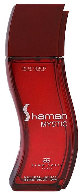 Мужская парфюмерия Arno Sorel Shaman Mystic 100 мл