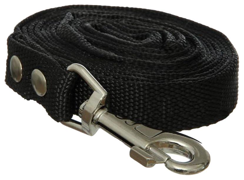 Поводок для собак ГеоГазТехнология, капрон, черный, длина 5 см