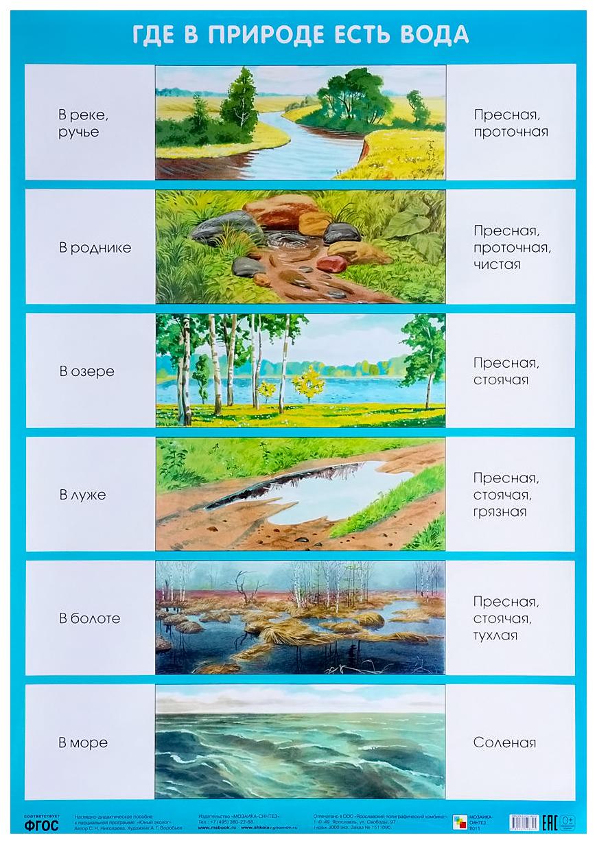 Плакат Где В природе Есть Вода