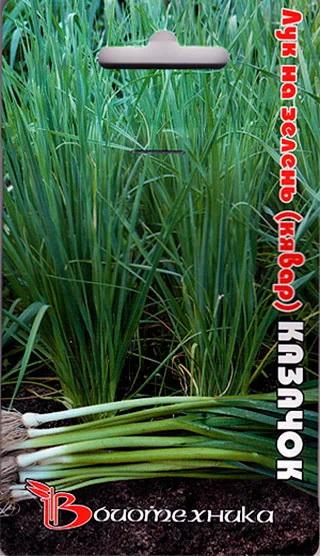 Семена Лук на зелень (клявар) Казачок, 0,5 г, Биотехника