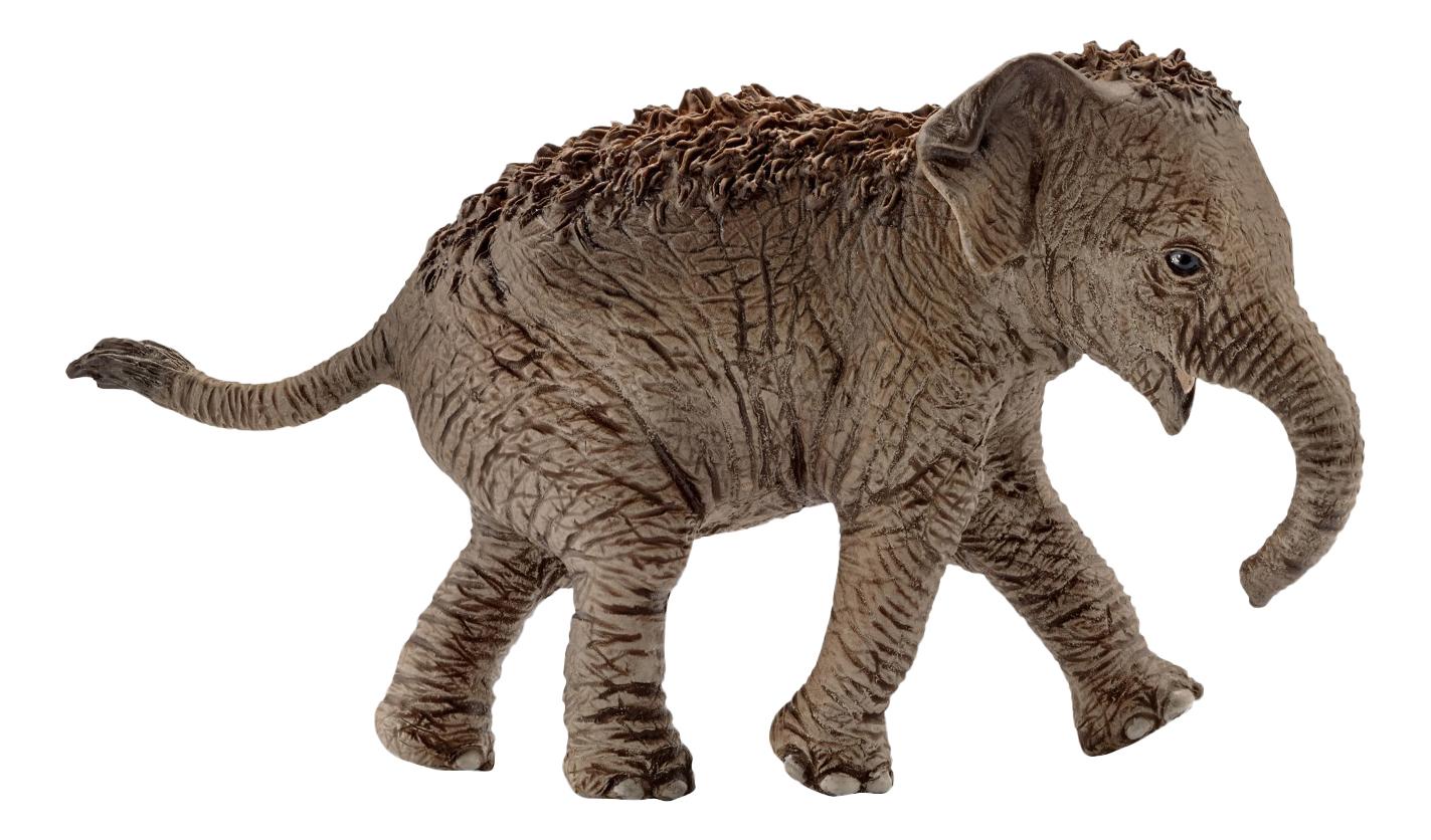 Купить Детеныш азиатского слона, Фигурка животного Schleich Азиатский Слон, детеныш, Игровые фигурки