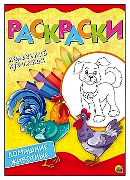 Раскраски А4. 8 листов. Домашние животные Рыжий кот