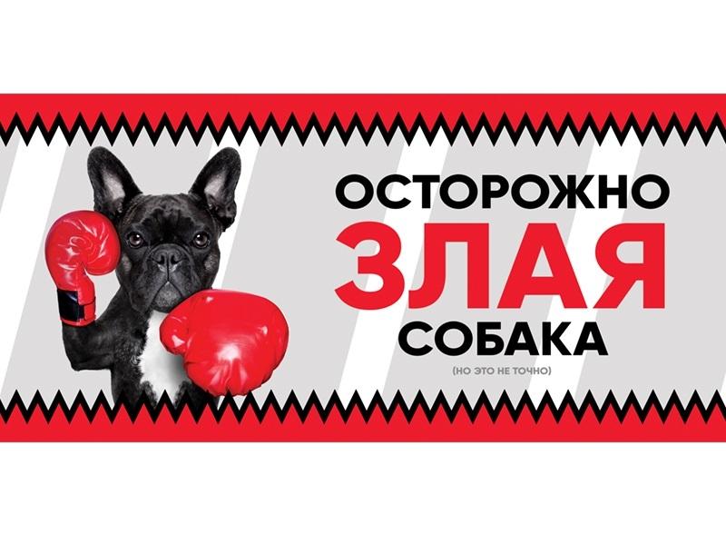 Табличка Gamma Злая собака, Французский бульдог,