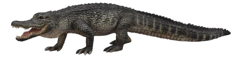 Фигурка Американский аллигатор L Collecta 88609b фото