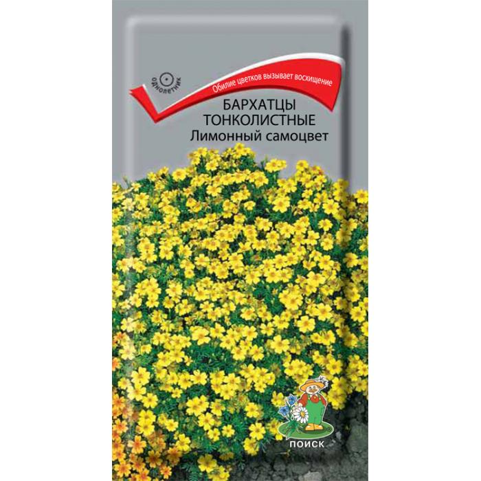 Семена Бархатцы тонколистные Лимонный самоцвет, 0,1 г Поиск