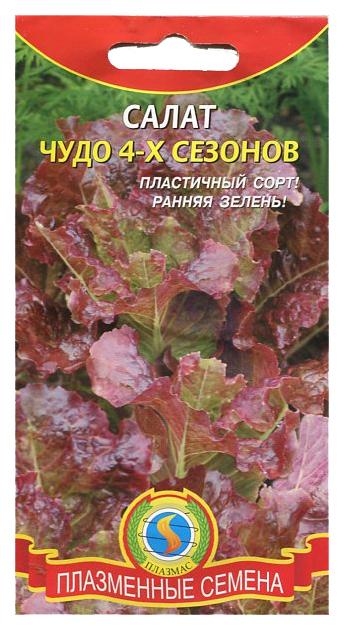 Семена Салат Чудо 4 х сезонов,