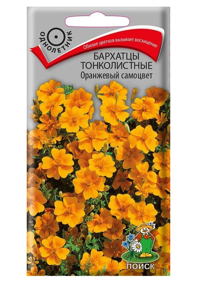 Семена Бархатцы тонколистные Оранжевый самоцвет, 0,1 г Поиск