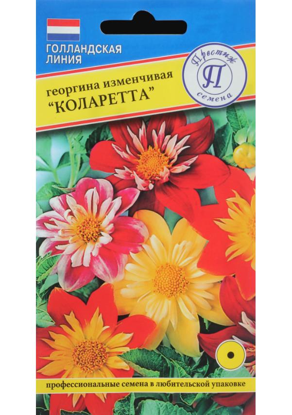 Семена Георгина изменчивая Коларетта, Смесь, 12 шт, Престиж