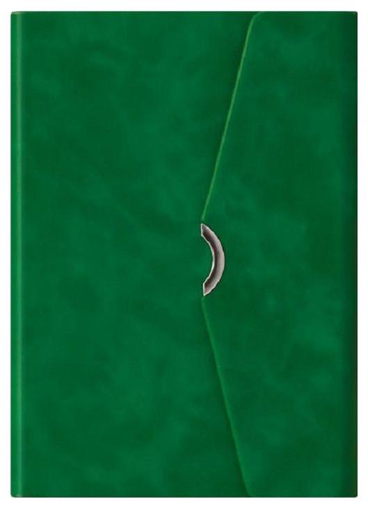 Ежедневник недатированный Феникс+ «Бейбискин»А5, 160 листов Зеленый