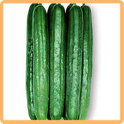 Семена Огурец Адзиикаку, 5 шт, Сады Азии 210733 по цене 95