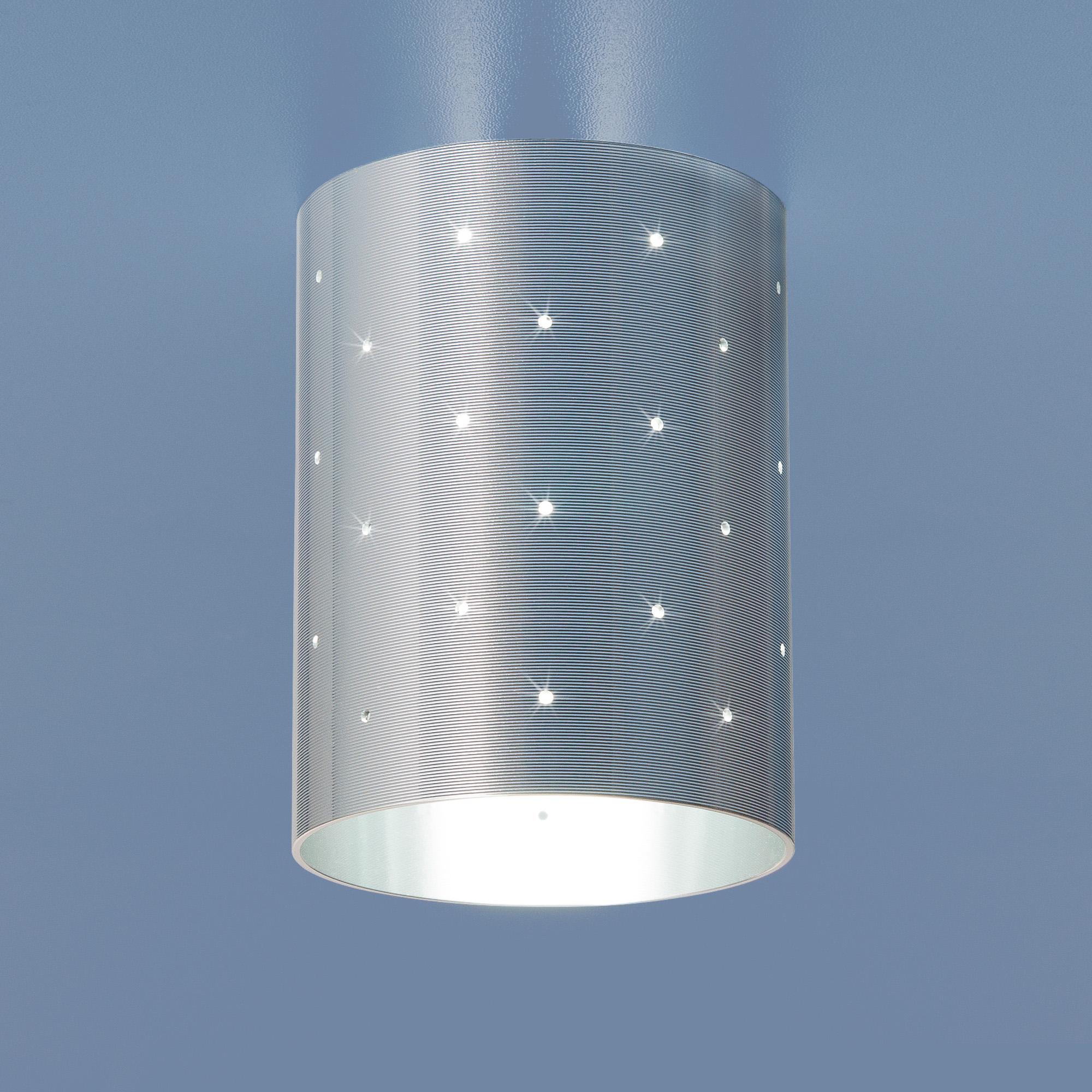 Потолочный светильник Elektrostandard 6072