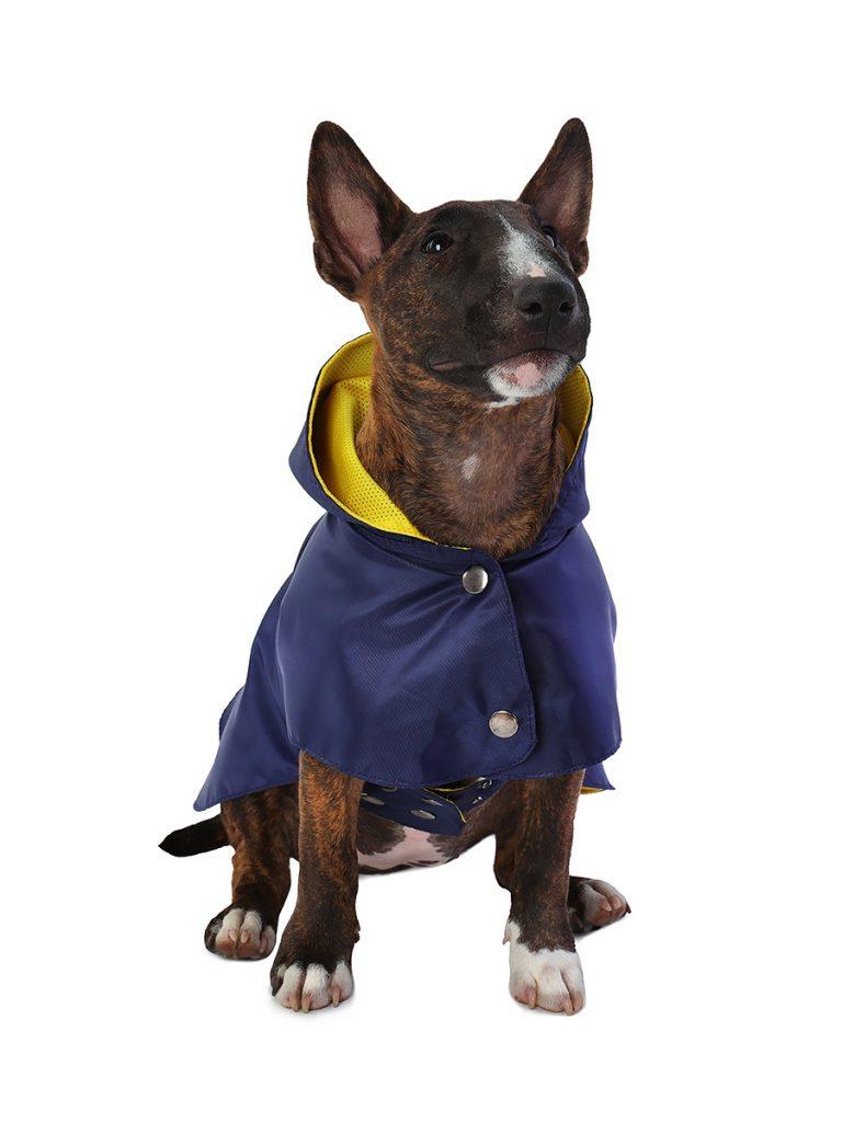 Дождевик для собак Монморанси Стиль, унисекс, темно-синий, М, длина спины 26 см фото