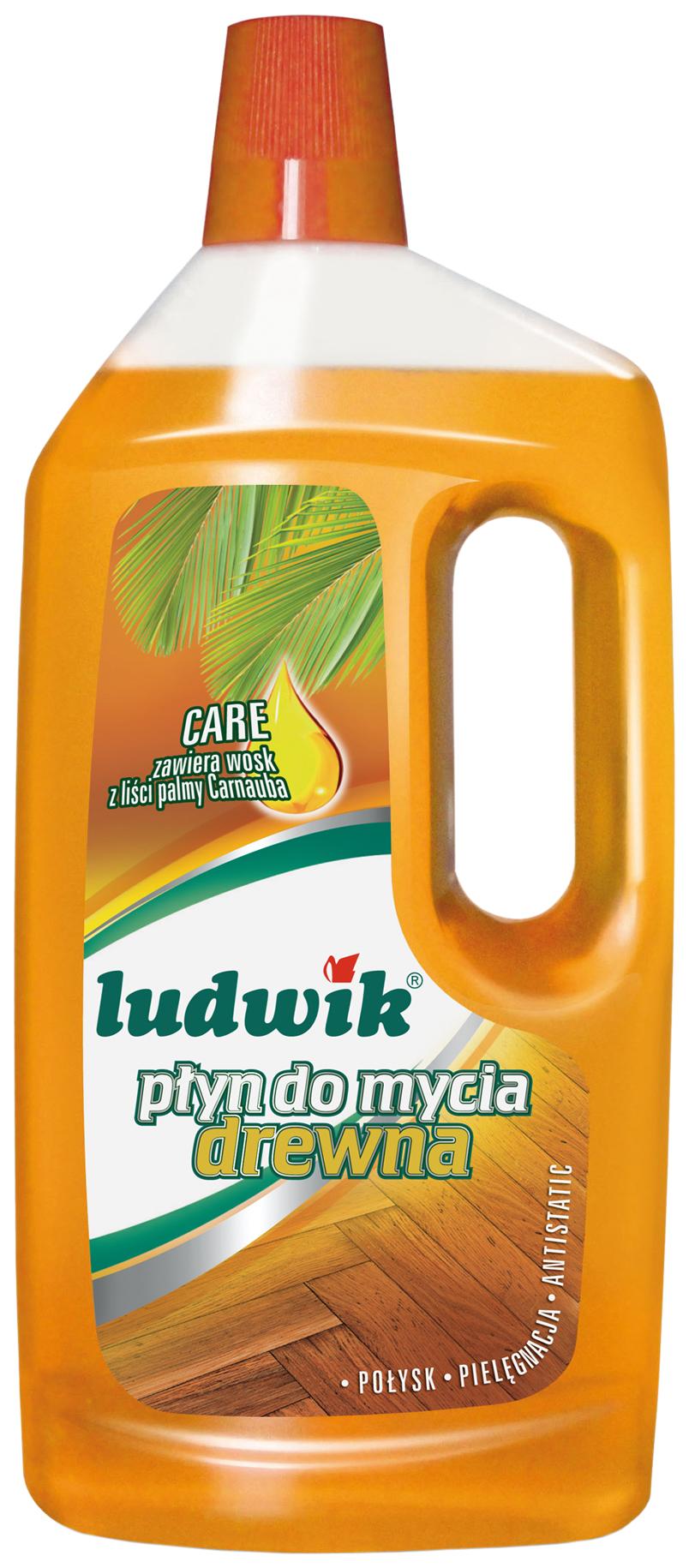 Чистящее средство для уборки полов Ludwik