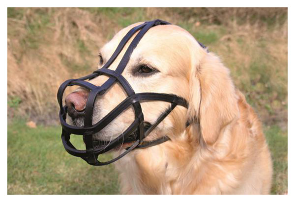 Намордник для собак Trixie Bridle Leather M, черный