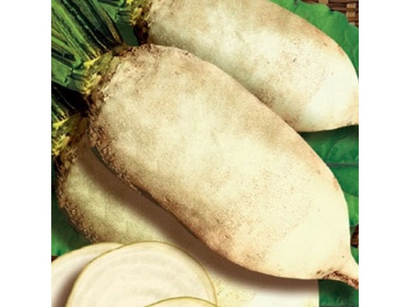 Семена Свекла кормовая белая Центаур поли, 0,5 кг, Гавриш