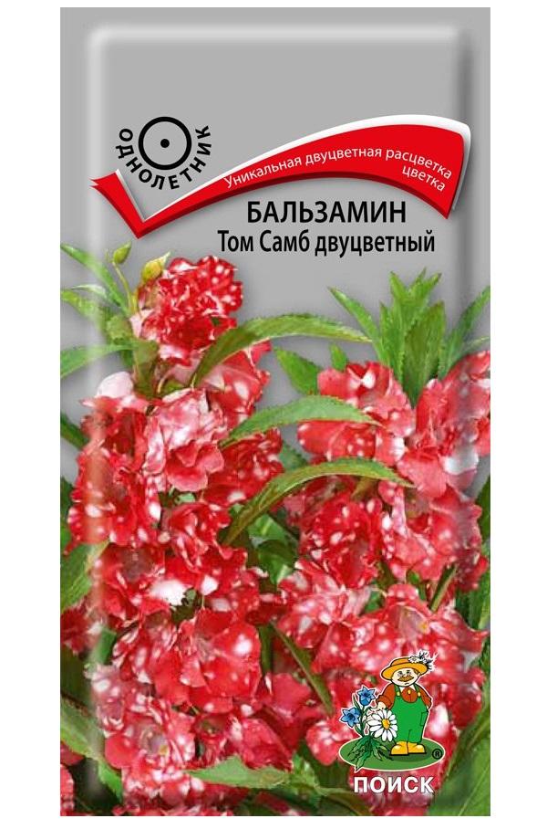 Семена Бальзамин Том Самб Двуцветный, 0,1 г Поиск