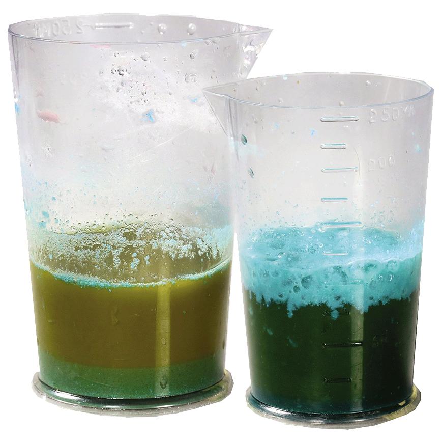 Набор для экспериментов Научные технологии Здоровый образ жизни, Соки и мед, 150 гр фото