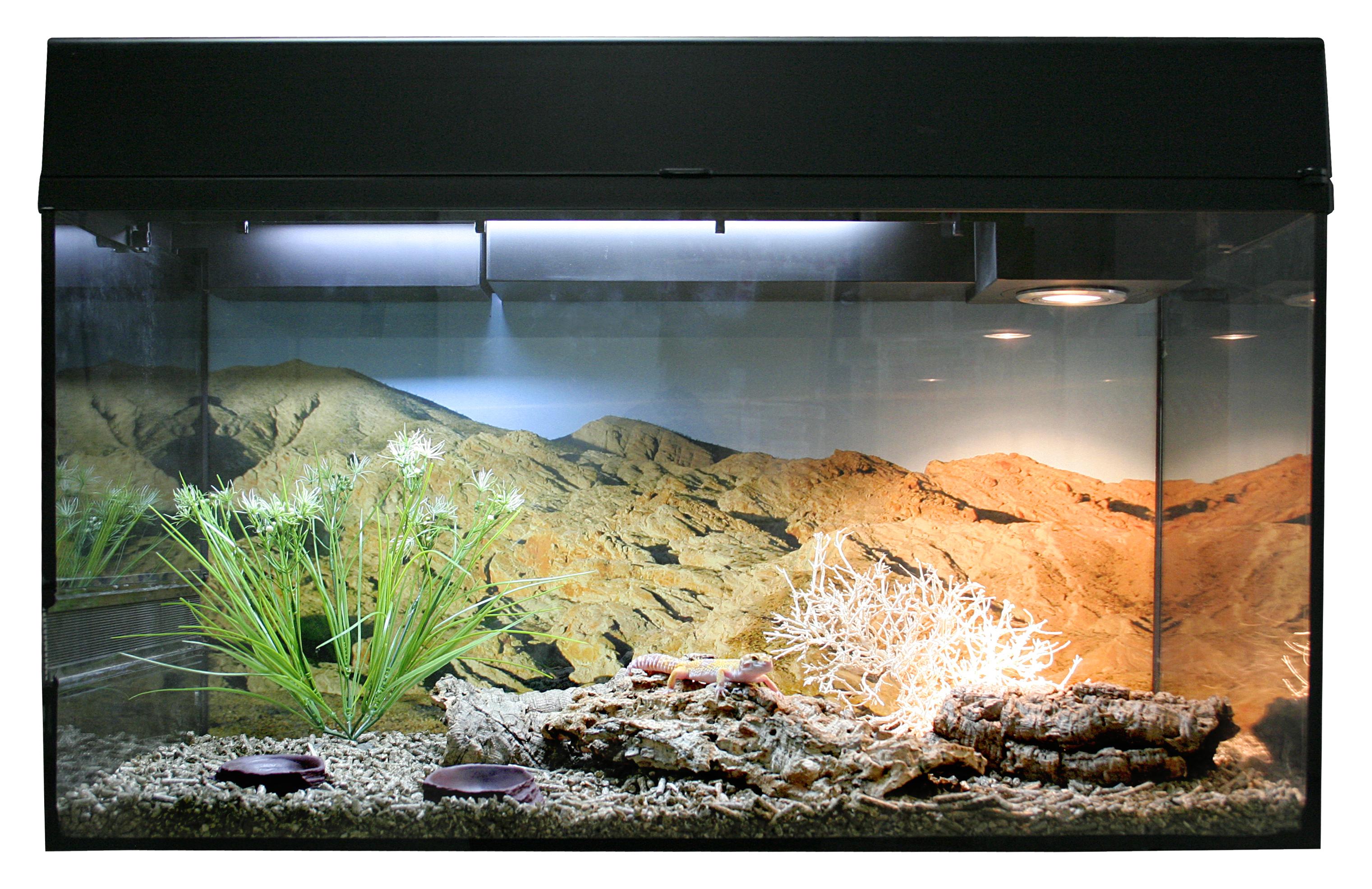 Террариум для рептилий Lucky Reptile Стартовый комплект