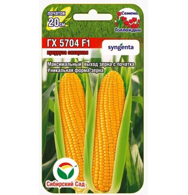 Семена Кукуруза сахарная ГХ 5704 F1, 6 шт, Сибирский сад