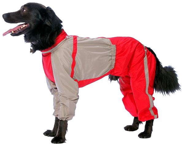 Комбинезон для собак ТУЗИК размер женский, разноцветный, длина спины 40 см