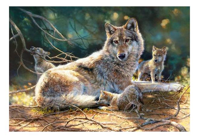 Купить Пазл Castorland Волки 1500 деталей, Пазлы