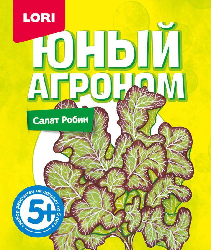 Купить Набор LORI Юный агроном Салат Робин, Играем в садовода