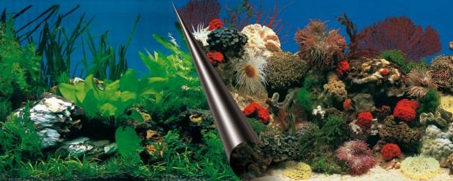 Фон для аквариума Europet Bernina Stone