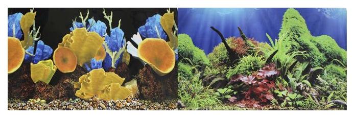 Фон для аквариума Prime Морские кораллы/Подводный мир 50х100см фото
