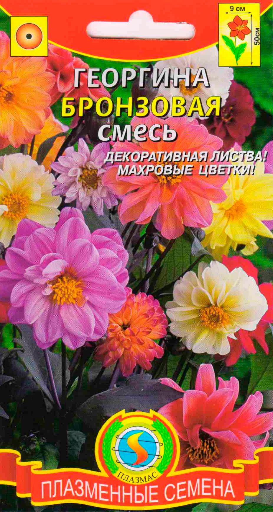Семена Георгина Бронзовая, Смесь, 12 шт, Плазмас