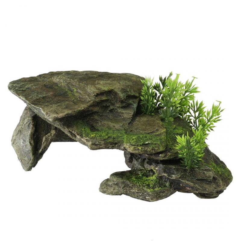 нужно рассвете, камни для аквариума фото дома