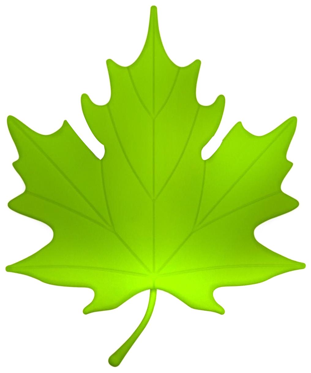 Картинки кленовые листья для детей