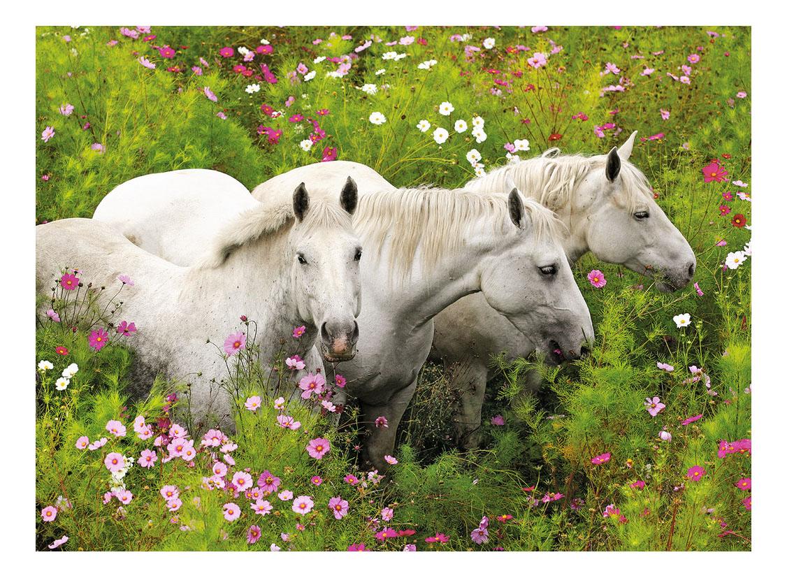 Купить Лошади в поле цветов, Пазл Ravensburger лошадь 300 деталей,
