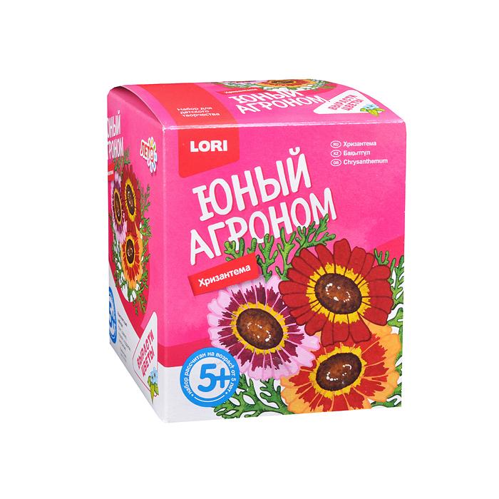 Купить Набор LORI Юный агроном Хризантема, Играем в садовода
