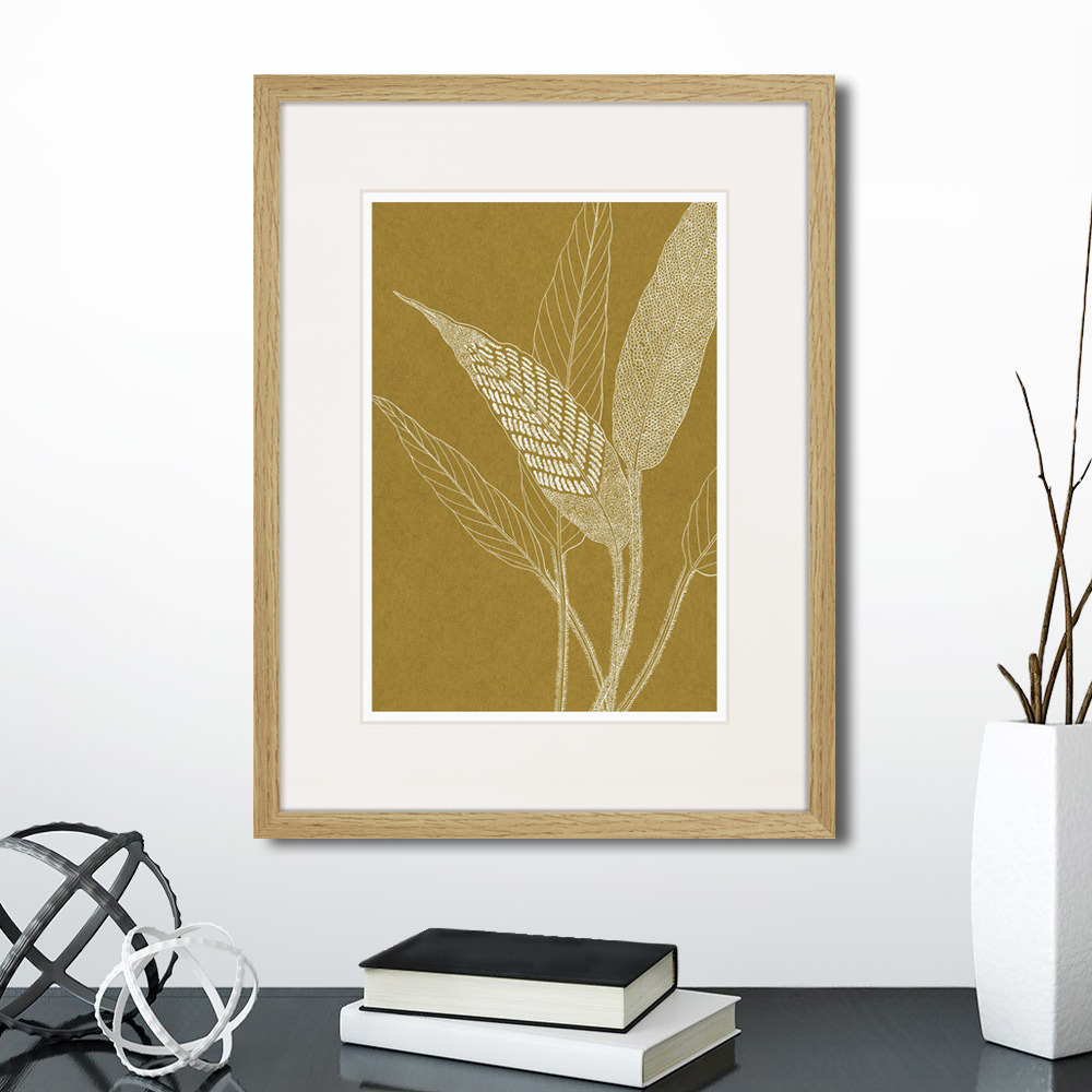 Картина The fern collection №40, 42 x 32 см, Картины в Квартиру фото