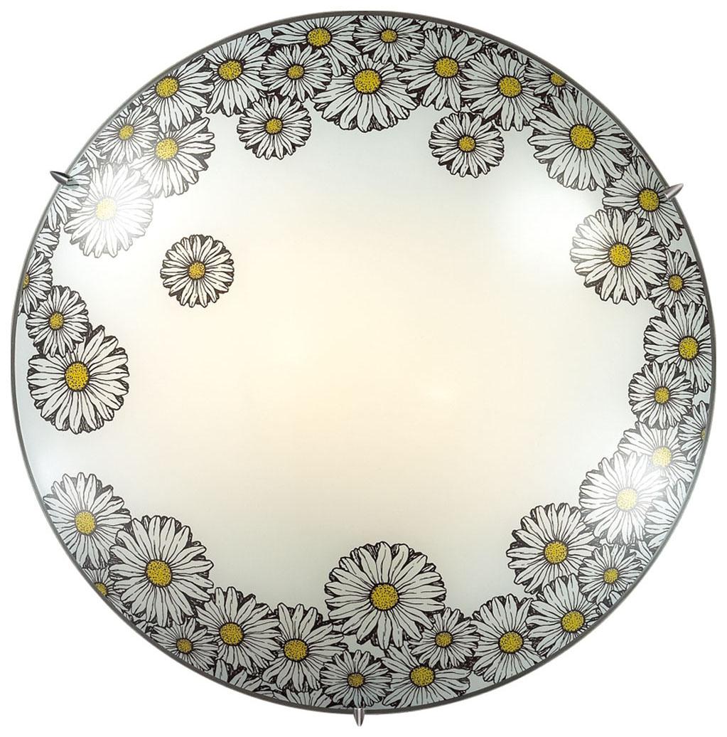 Настенно-потолочный светильник Sonex Mille 2215 фото