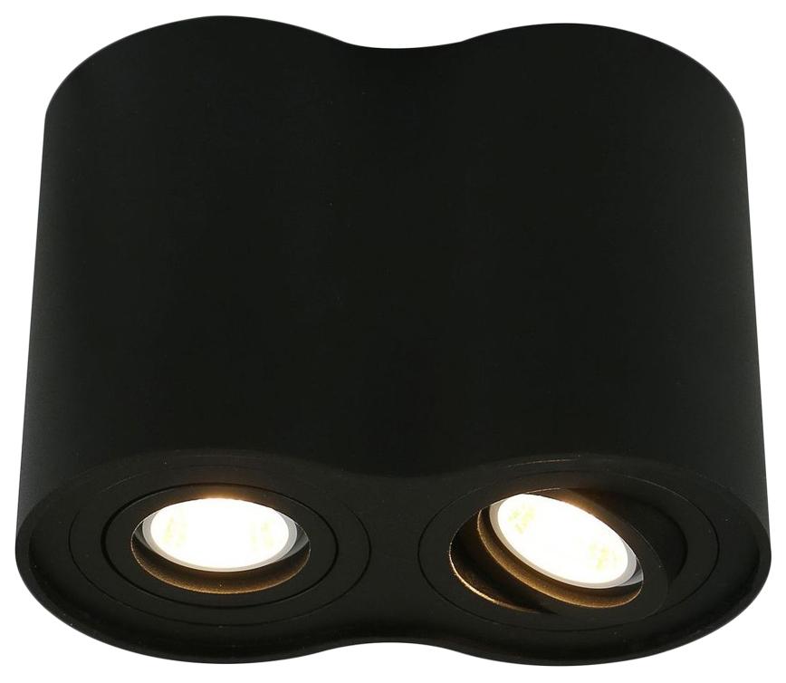 Потолочный светильник ARTE LAMP Falcon A5644PL 2BK