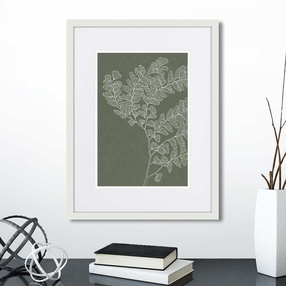 Картина The fern collection №15, 42 x 32 см, Картины в Квартиру фото