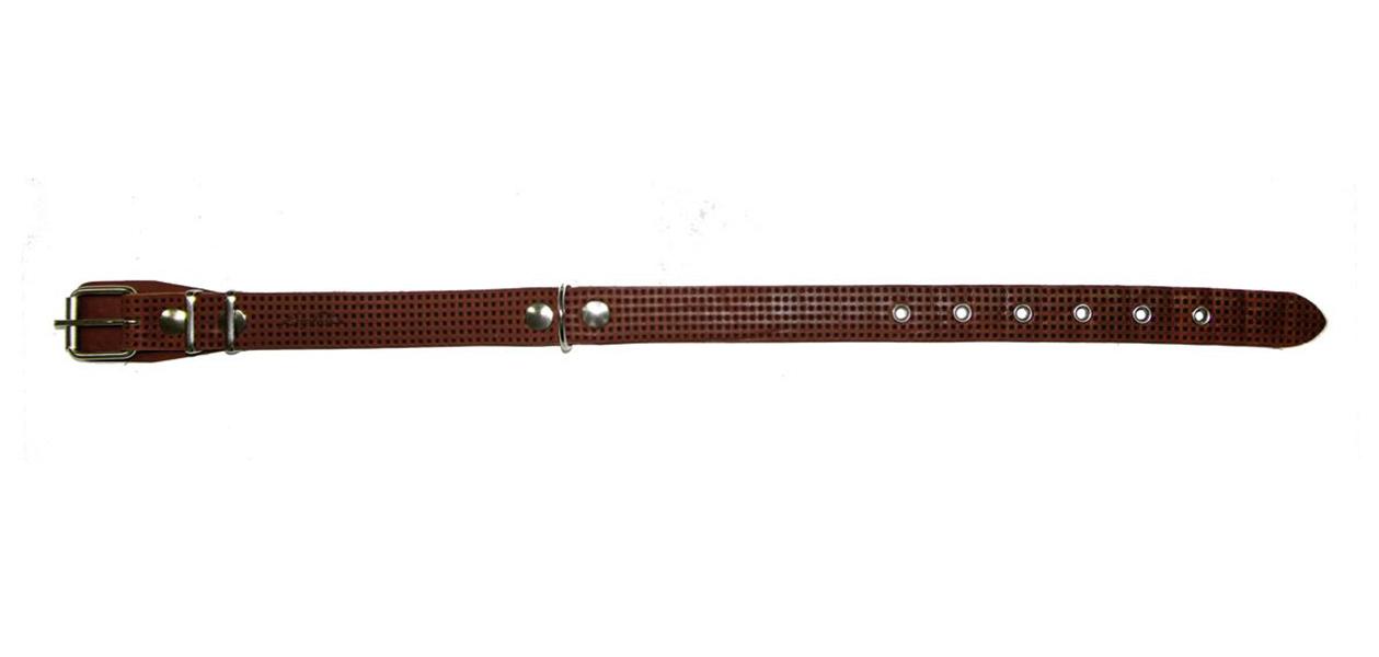 Ошейник для собак Аркон, с тиснением, коньячный, ширина 25 мм, длина 40-54 см фото