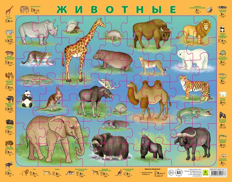 Животные. Пазл детский на подложке (36х28 см., 63 эл.)